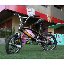 Bicycle Cobra 16 Free style